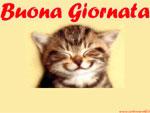 Bellissime e divertenti cartoline buona giornata e cartoline animate amicizia