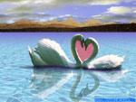 Cartolina romantica, d'amore