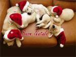 Auguri Buon Natale