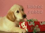Cartolina d'auguri: Buone Feste