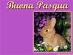 Cartolina animata auguri di buona Pasqua