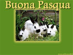 Speciale Cartoline pasquali: cartolina animata auguri di buona Pasqua