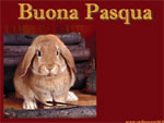 Cartolina animata Pasqua