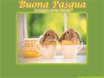 Cartolina Pasqua