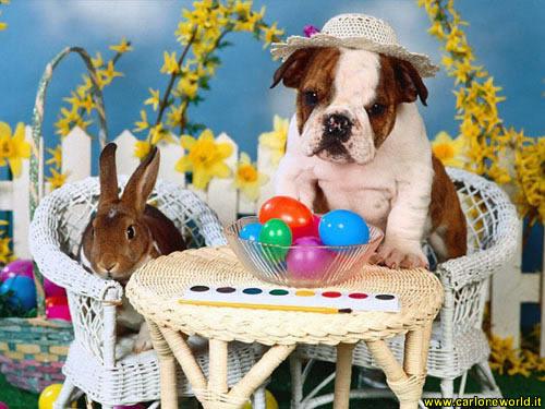 Foto Pasqua con simpatici amici