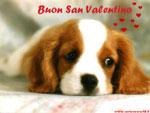 Cartolina di S.Valentino: buon San Valentino